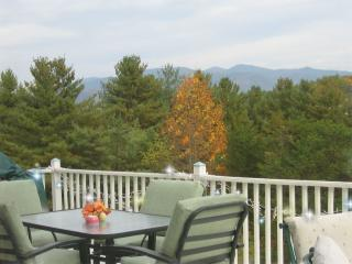 Norally House-Asheville NC Area Vacation Rentals - Asheville vacation rentals