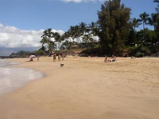 Hale Ili Ili #C Kamaole Beach 1 Oceanfront 2/2 - Kihei vacation rentals
