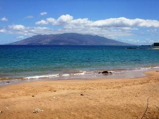 Wailea Ekolu #102  2 Bd 2 Bath, Ocean View, A/C,  Sleeps 6  Great Rates!! - Wailea vacation rentals