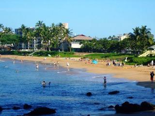Kihei Akahi D412 Oceanviiew 1/1 across from Kamaole Beach ll  Great Rates! - Kihei vacation rentals