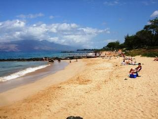 Maui Kamaole A202 Ocean View Front Row Nearest Beach 2B 2Ba Great Rates! - Kihei vacation rentals