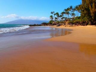 Kihei Alii Kai A305 Closest building to Kamaole Beach #One.  1/1 Sleeps 4! - Kihei vacation rentals