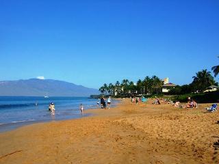 Kihei Kai Nani #210 Across From Kamaole Beach #2  Great Rates Sleeps 4 - Kihei vacation rentals