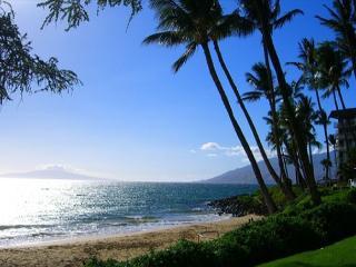 Across from Kamaole Beaches  Kihei Akahi 1 Bd 1 Ba   Great Rates!! - Kihei vacation rentals