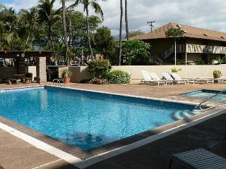 Kihei Bay Surf #250  Studio Across From The Beach Great Rates !! - Kihei vacation rentals