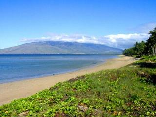 Waiohuli Beach Hale 225 Ocean View 1Bd 1Ba Sleeps 4  Great Rates! - Kihei vacation rentals