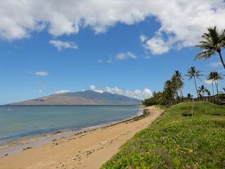 Waiohuli Beach Hale #D-114 Lovely Unit, Sleeps 4 1 Bd 1 Bath Great Rates! - Kihei vacation rentals