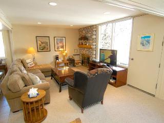 Fifth Avenue Unit 7 - Aspen vacation rentals