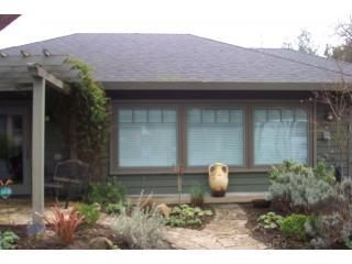 Sonoma Wine Country Cottage - Glen Ellen vacation rentals