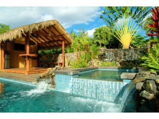 Pool, Spa, Waterfall, and Cabana - Amazing House w/ Pool, Cabana & More Kihei Wailea - Kihei - rentals