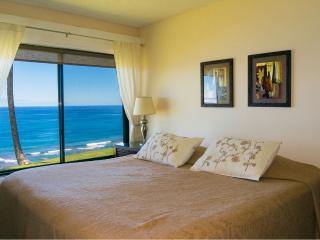 Sealodge condo unit A1 - Princeville vacation rentals