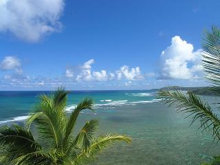 Nice Condo with Internet Access and Dishwasher - Princeville vacation rentals