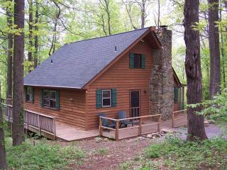 Private 3BR Blue Ridge Mtn Cabin - Huge Deck - Steeles Tavern vacation rentals