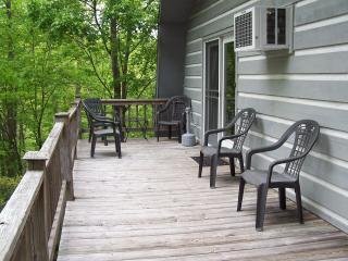 Pet Friendly Vacation Rental in Blue Ridge Mtns - Lyndhurst vacation rentals