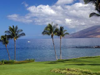 Wailea Elua Oceanfront, Owner Direct, Renovated! - Wailea vacation rentals