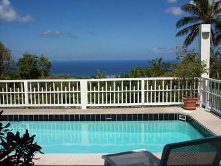 Secluded, romantic villa with views of St. Kitts and Statia. KL SEC - Saint Kitts and Nevis vacation rentals