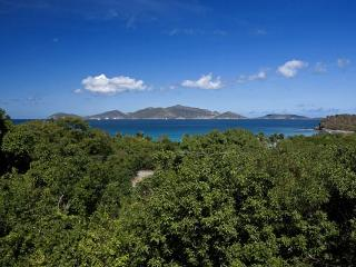 400 yards from the villa to the white sands of Smugglers Cove Beach. MAT SAD - Tortola vacation rentals