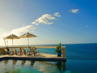 4 acre estate perched on top of a cliff, exquisite ocean views. WAL DES - The Farrington vacation rentals