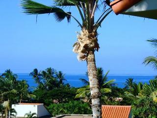 Palms at Wailea #1204 Ocean View, Sleeps 4. - Wailea vacation rentals