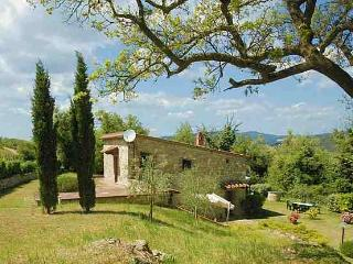 Tuscan Hillside Villas with Views of Vineyards and Olive Groves - Chiantigiana Minore - Gaiole in Chianti vacation rentals