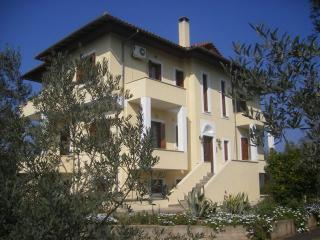Apartments in seaside village south of  Volos - Agios Georgios Nilias vacation rentals