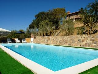 Farmhouse in Southern Tuscany with Pool - Podere Chianciano - Chianciano Terme vacation rentals