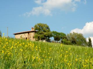 Tuscany villa with pool - BFY13544 - Chianciano Terme vacation rentals