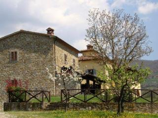 Lovely Villa with Countryside Views of Tuscany - Villa Andreina - 14 - Subbiano vacation rentals