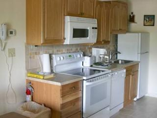 Gorgeous House with 1 BR, 1 BA in Whitefish (14BD) - Whitefish vacation rentals