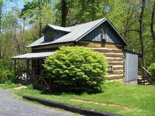 Authentic Civil War Cabin in Blue Ridge Mountains - Charlottesville vacation rentals