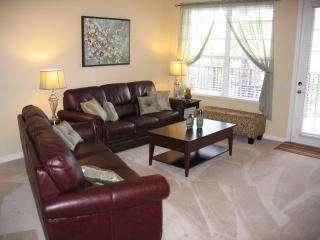 Our condo living area - Magnificent Central Condo - Disney/Universal/OCCC - Orlando - rentals