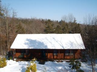 Massanutten Log Home-with hot tub - Massanutten vacation rentals