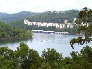 FABULOUS LAKEFRONT CONDO! Secluded Mountain Resort - Branson vacation rentals