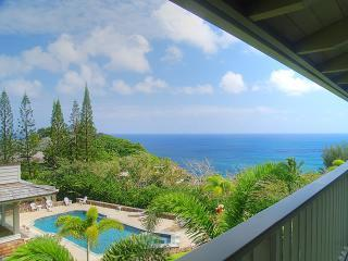 Breathtaking Ocean Views from Lanai - Kauai Estate with Spectacular Views (Pool/Spa) - Kilauea - rentals