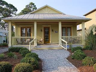 Perfect House with Deck and Internet Access - Seagrove Beach vacation rentals