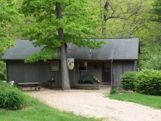 Virginia Cabin Rental - Virginia Blue Ridge Mountain Cabin Rental-Foxwood - Wintergreen - rentals
