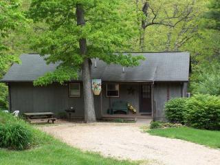 Virginia Cabin Rental - Virginia Blue Ridge Mountain Cabin Rental-Foxwood - Wintergreen - rentals