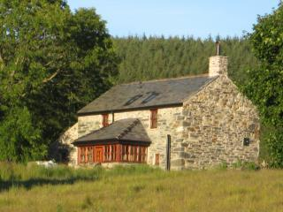 Bron-Nant Holiday Cottage with Fire, Pool & Views - Betws-y-Coed vacation rentals