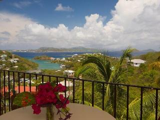 Spacious Cruz Bay Condos w/Ocean Views @ Serendip - Cruz Bay vacation rentals