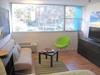 Amazing Rates! Classic Retro Studio Apartments - Atlanta vacation rentals