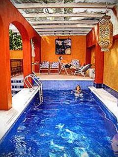 Solar heated swimming pool - House/B&B- Sleeps 2-12, Swimming Pool, Views - San Miguel de Allende - rentals