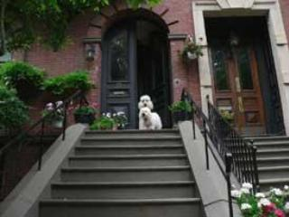 front steps - Beacon Hill Bed & Breakfast - 1 SPACIOUS Room - Boston - rentals