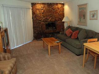 Nice 1 bedroom Condo in Vail - Vail vacation rentals