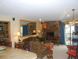 2 bedroom Apartment with Deck in Vail - Vail vacation rentals