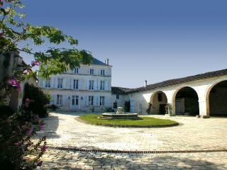 Beautiful Cognac vacation Villa with Satellite Or Cable TV - Cognac vacation rentals