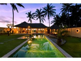 Pleiades by sunset - Private Pool Villa with 14 mtr pool, 2k UBUD, Wifi, Parking, Security, Views - Ubud - rentals