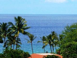 Palms at Wailea #1101 Great Ocean Views! Large Sun Deck!  2/2 Great Rates! - Wailea vacation rentals