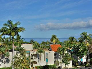 Palms at Wailea #1105 Oceanview Completely Remodeled 2Bd 2Bath Great Rates! - Wailea vacation rentals