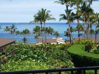 Wailea Elua #2110 - Gorgeous Ocean View 2B/2B - Wailea vacation rentals