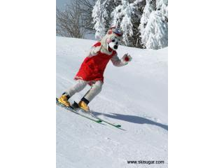 Angie's Sugar Shack - Sugar Mountain Ski Resort - Banner Elk vacation rentals